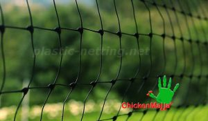 chicken net used in garden for protection
